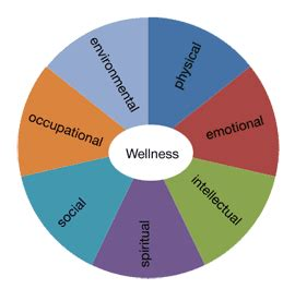Importance Of Good Health Essay Sample